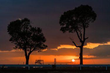 【ローカル絶景スポット】依佐美送信所鉄塔跡の木から見る絶景!